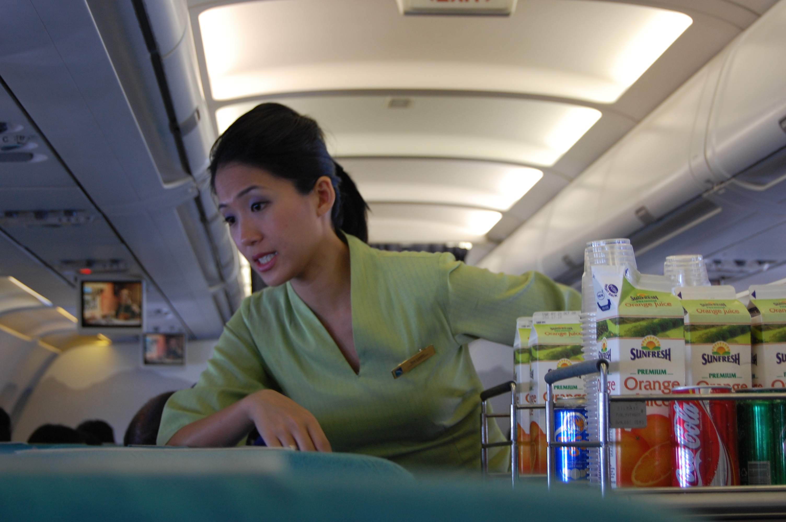 pilots and flight attendants confess the 21 dirty secrets of flying 8 bribe the flight attendants