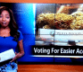 This Reporter Quit Her Job On Air in the Most Epic Way for Marijuana