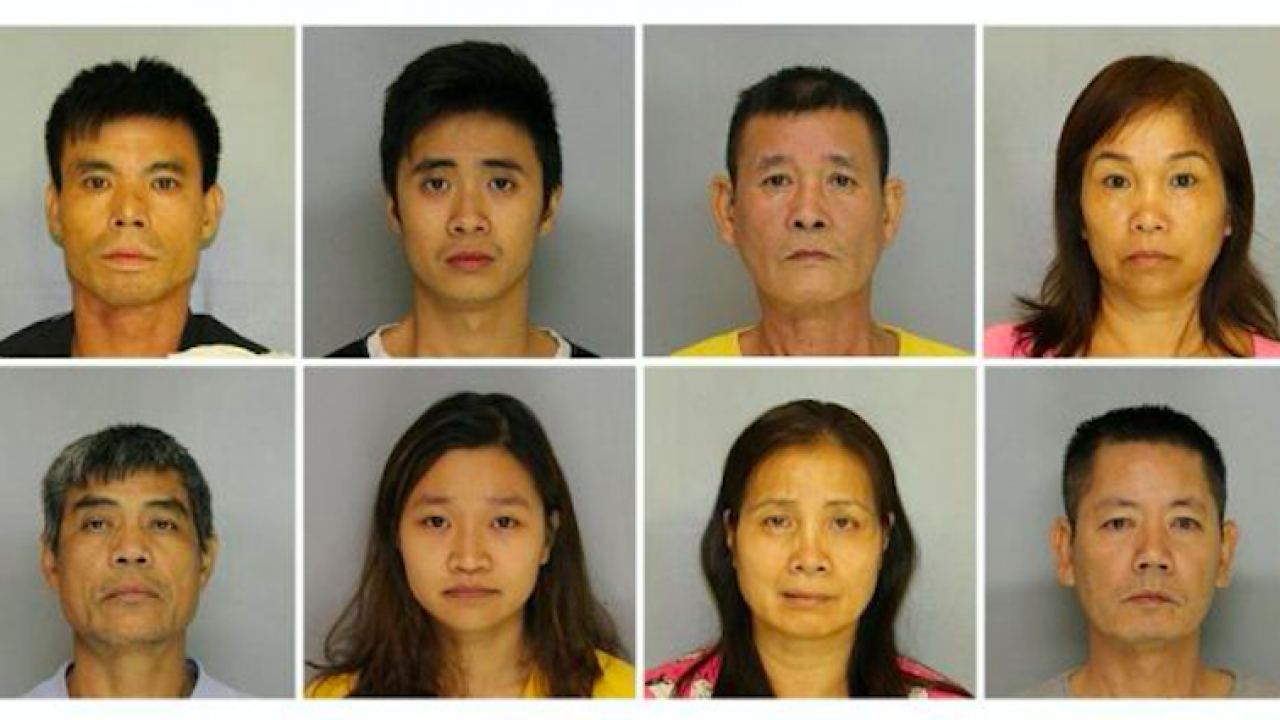 9 Asian Americans Busted For $7 Million of Marijuana in Secret