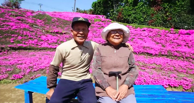 japanese husband plants flowers for his blind wife