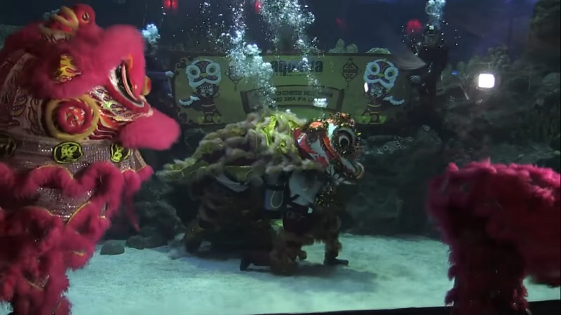 A Malaysian aquarium has added a new twist to the traditional lion dance by performing underwater as fish, turtles, and sharks swim around them.