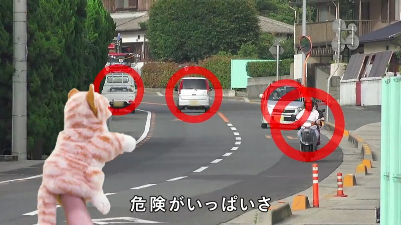 Animal psychologists at Kyoto University have recently launched a public service video to educate cats about traffic safety.