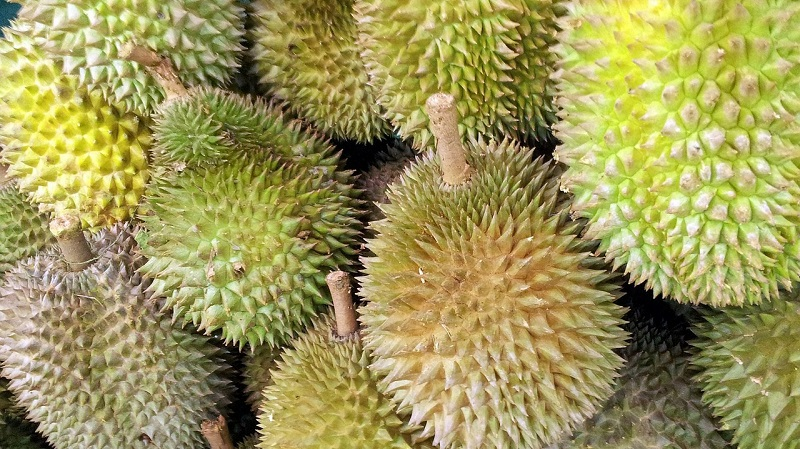 China's increasing demand for durian is threatening to cause massive deforestation in Malaysia, local environmentalists warn.