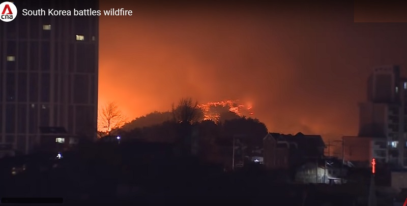 Terrifying clips of towering flames and dark clouds of smoke engulfing large residential areas in South Korea have emerged on local news and social media over the weekend.