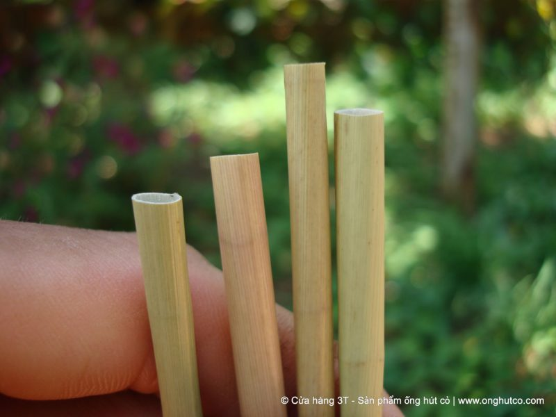 A young Vietnamese man fulfills his part in saving the planet from plastic by making biodegradable straws out of wild grass.
