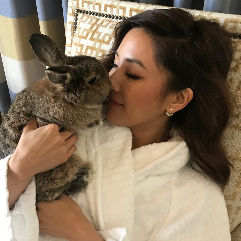 """""""Crazy Rich Asians"""" and """"Fresh Off the Boat"""" star, Constance Wu, is making headlines again and this time various sources have claimed that she allegedly let her pet rabbit make a huge mess inside the $6.5 million penthouse that she rented."""