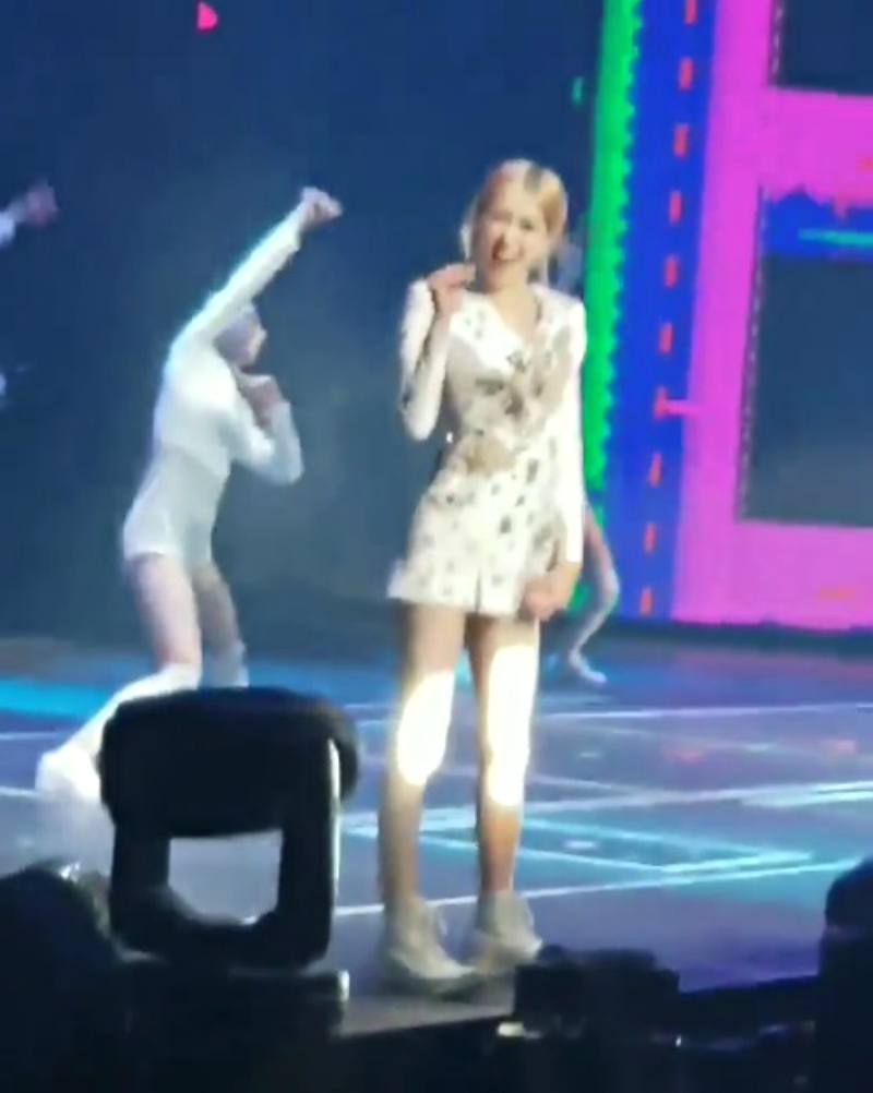 BLACKPINK's Rosé Stopped Singing During Her Concert to Answer a