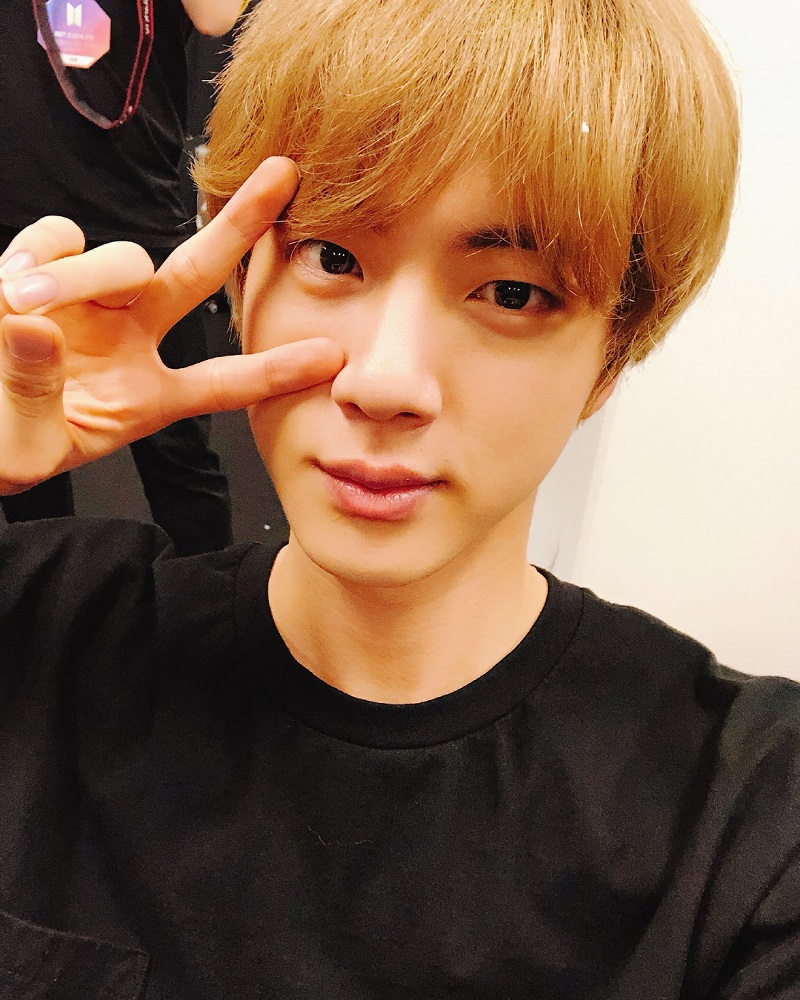 BTS member Jin has apparently become a member of UNICEF's Honors Club for his donations since last May.