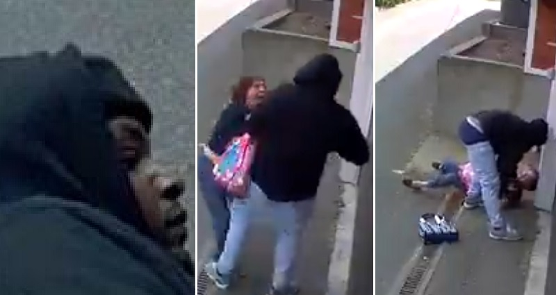 tough asian grandma fights off robber in seattle