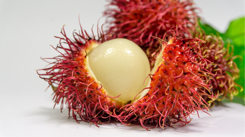 """Netflix series """"Another Life"""" had apparently used rambutan, a fruit commonly found in southeast Asia, as an alien fruit."""