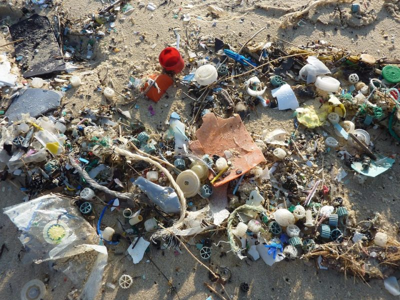 A South Korean scientist is helping to curb climate change by developing biodegradable plastic bags made of materials such as crab shells.