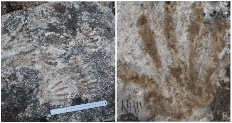 Chinese scientists discover worlds oldest art